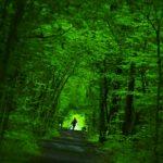 Actitudes del buen emprendedor Se verde