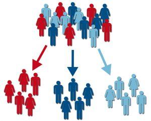 Diferenciando tu nicho mediante la segmentación